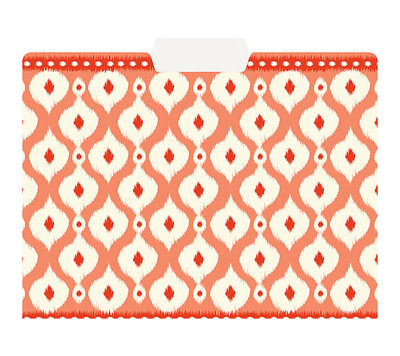 Orange Ikat File Folders