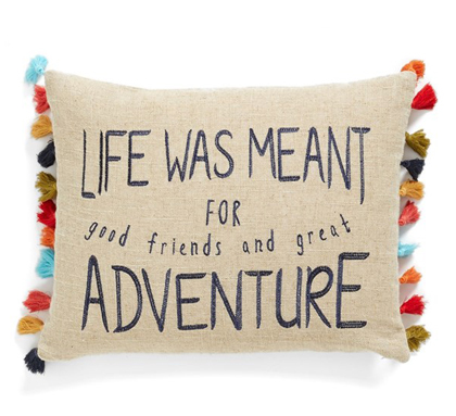 Life Adventure Accent Pillow