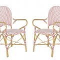 Safavieh Biarritz 2-Piece Wicker Patio Arm Chair