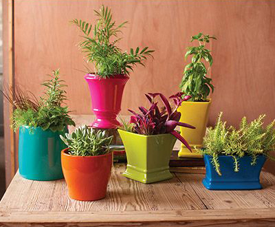 Multi-Colored Ceramic Planter Set